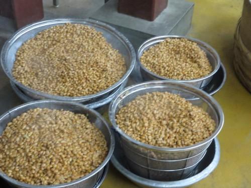 3日目 大豆を温め水を切る